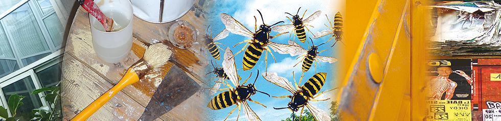 Insecticide Volant et Rampant. Préventif et Curatif. Effet Foudroyant. Pulvérisations jusqu'à 3 mètres.