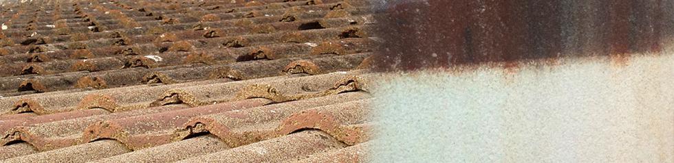 Nettoyant de toitures - Curatif et préventif. Bactéricide et Fongicide.